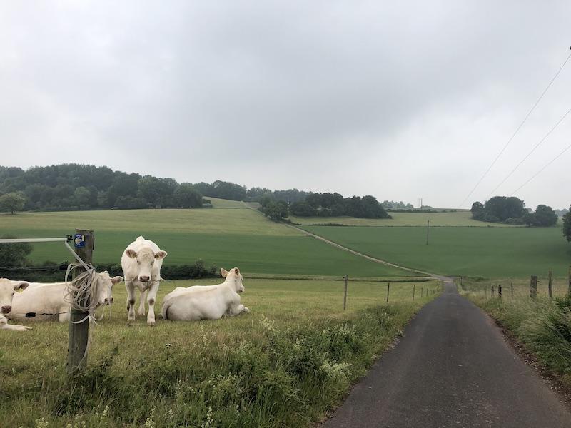 Pilgerweg Eifel