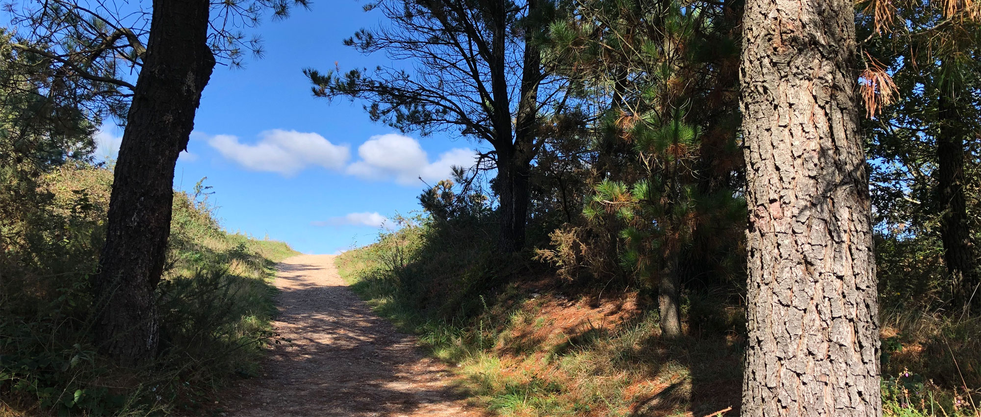 Fotos Camino Finesterre