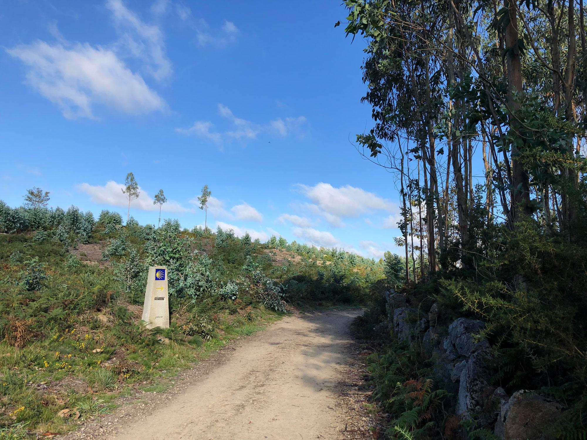 Pilgerweg auf der zweiten Etappe hinter Negreira