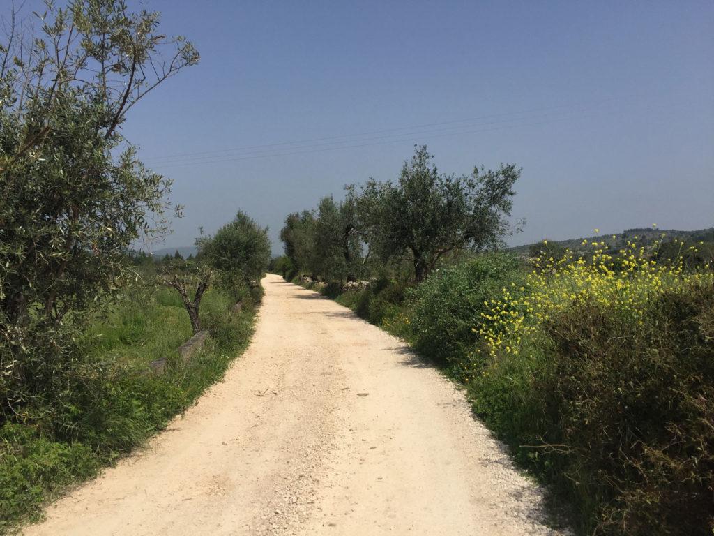 Wanderweg südlich von Rabacal auf dem Abschnitt Lissabon-Porto