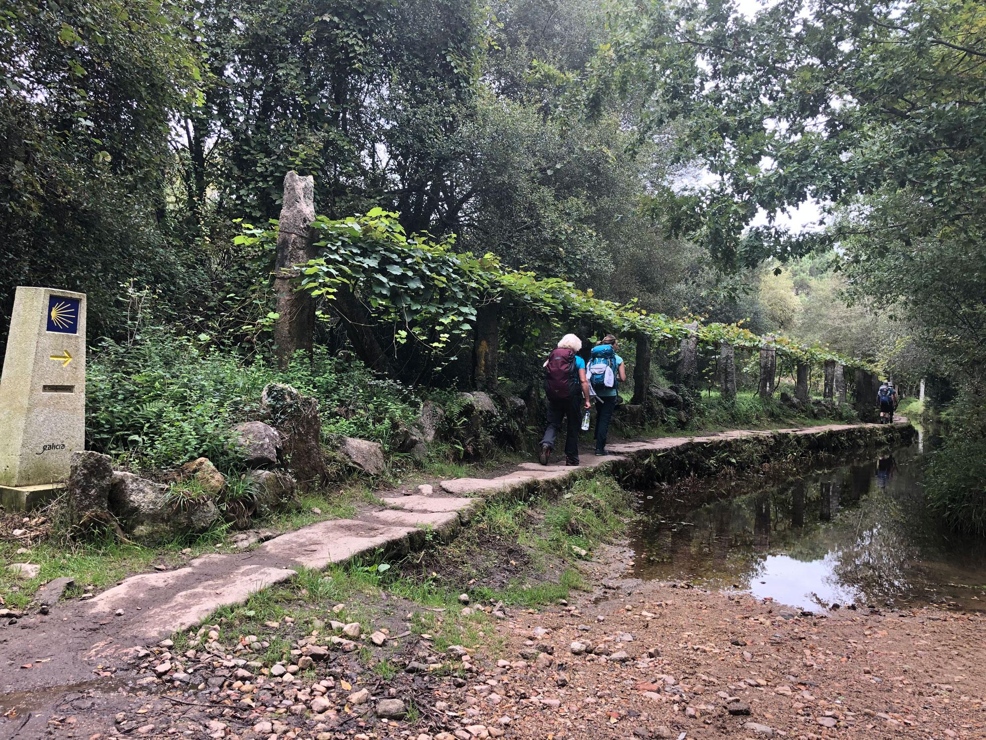 Inlandsweg zwischen Tui und O Porrinho
