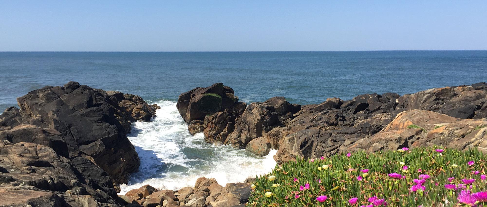 Fotos Portugiesischer Jakobsweg Küstenweg