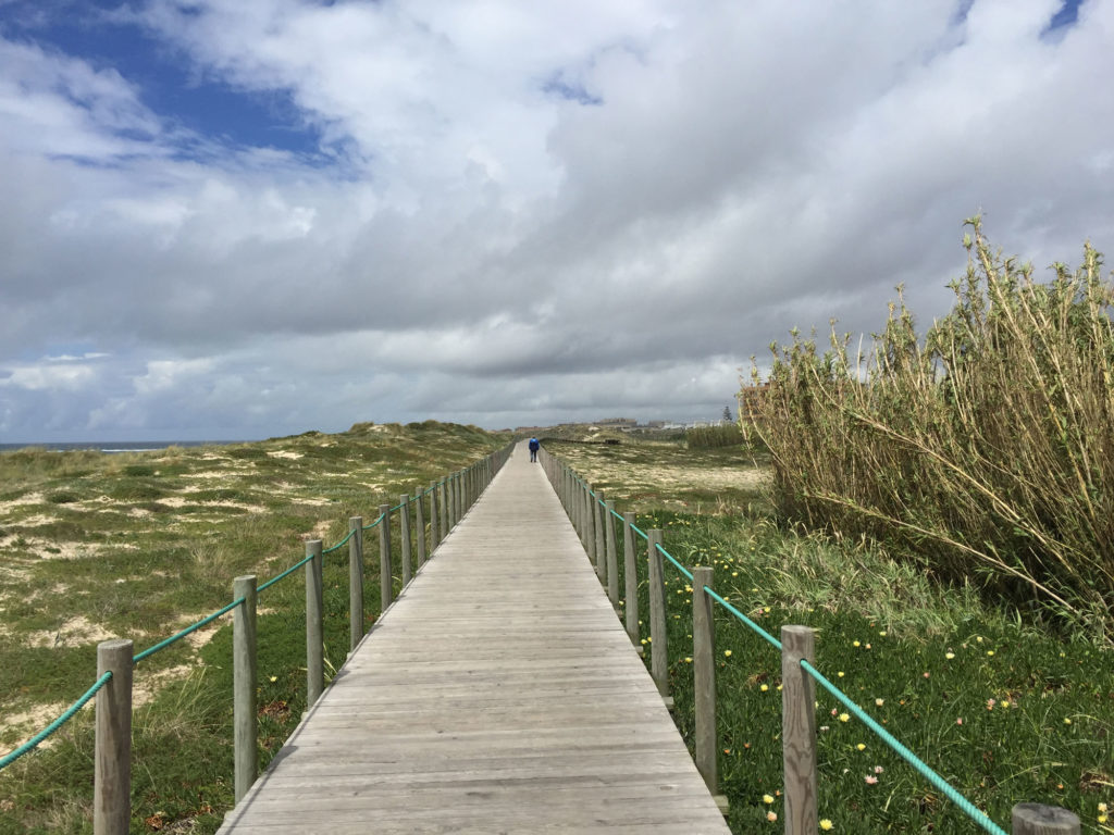 Typischer Anblick für den ersten Teil des portugiesischen Küstenwegs