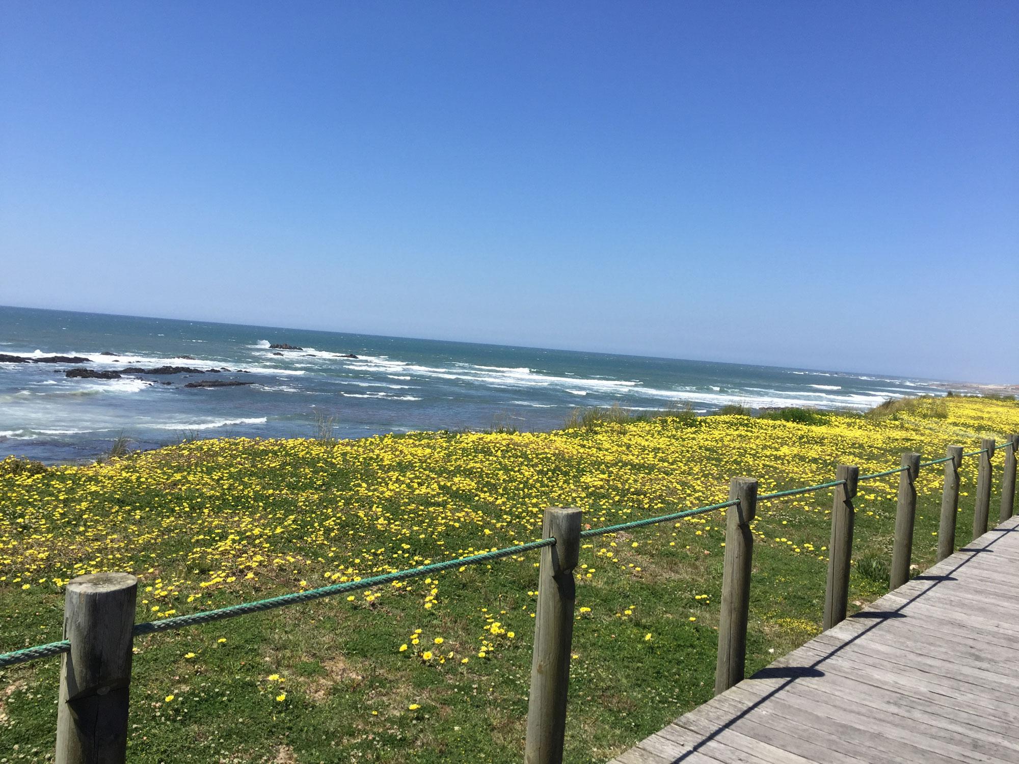 Pilgerweg nördlich von Matosinhos