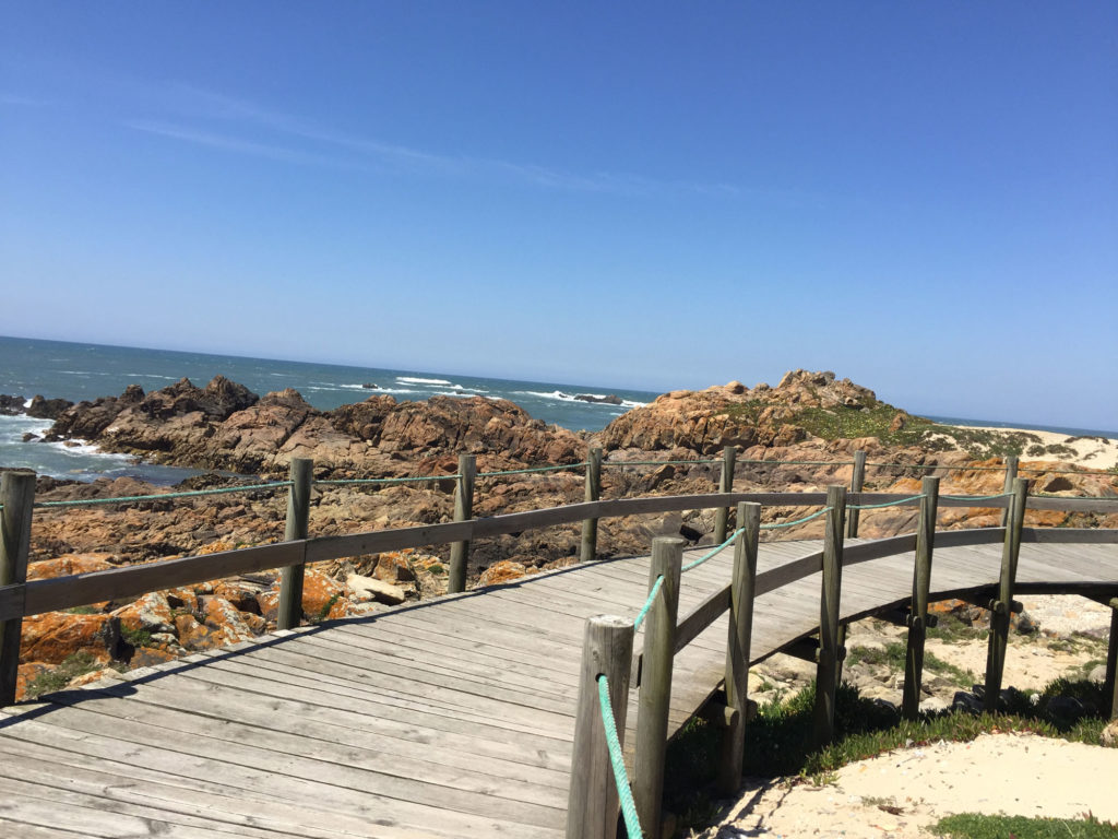 Holzplanken auf dem portugiesischen Küstenweg