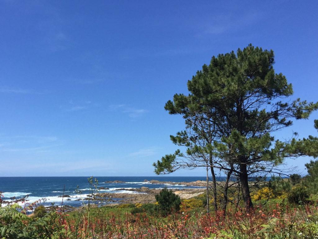Pilgerweg in Spanien zwischen A Guarda und Baiona