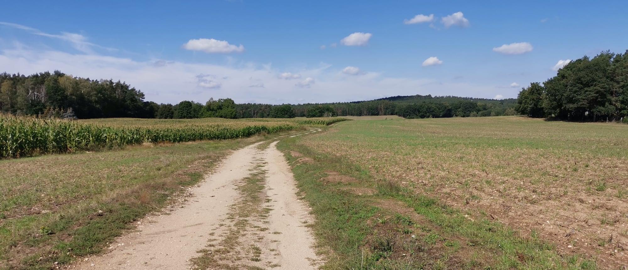 Ökumenischer Pilgerweg (Via Regia)